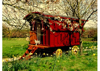 The Gypsy Caravan Company
