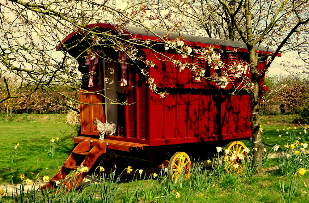 Gypsy Caravan for sale